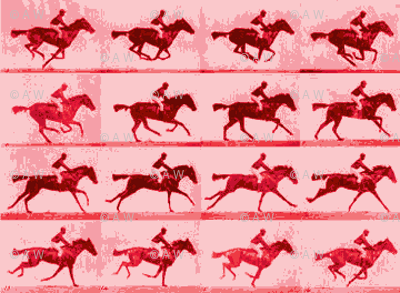Muybridge Motion Studies