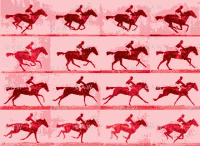 Muybridge Motion Studies